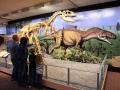 Dino-Natl-Mon-6319-800x600.jpg