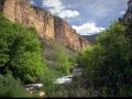 Jones-Creek-800x600.jpg