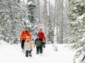 OldSite-BH-snowshoe-family-871-800x600.jpg