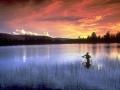 OldSite-fishing-800x600.jpg