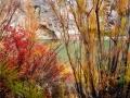 Brush of Color.jpg
