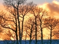 Red Cloud Sunset.jpg