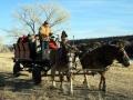Wagon-Ride-Winter-2009-800x600.jpg
