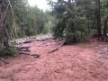 Dry Fork Flume Trail