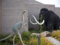 Dino-Natl-Mon-0449-800x600.jpg