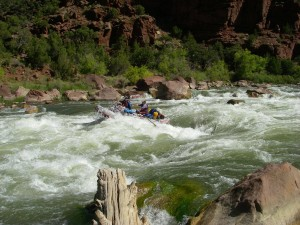 Green River Hells Half Mile Rapid